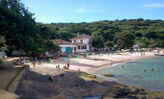 Buzios, RJ: Praia da tartaruga, búzios