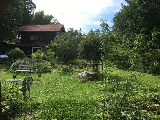 Garden House Sara: 裏庭のデッキは落ち着けます。また、二頭の山羊が可愛いです。