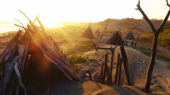 Sigatoka Sand Dunes National Park: national parks service activity remainings