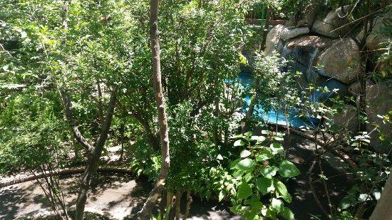 Parque Agua Azul: 20160401_115647_large.jpg