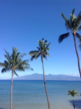 Valley Isle Resort: Morning coffee anyone?