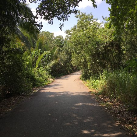 Pulau Ubin, Singapore: photo2.jpg