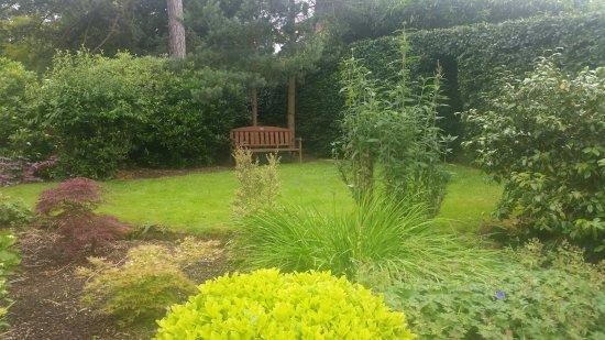Morley Retreat Tea Rooms: Garden