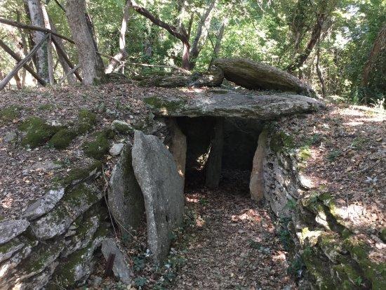 Necropoli del Puntone : photo0.jpg