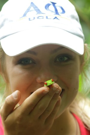 Hotel Kokoro Arenal: daughter who found a red eye tree from on property.