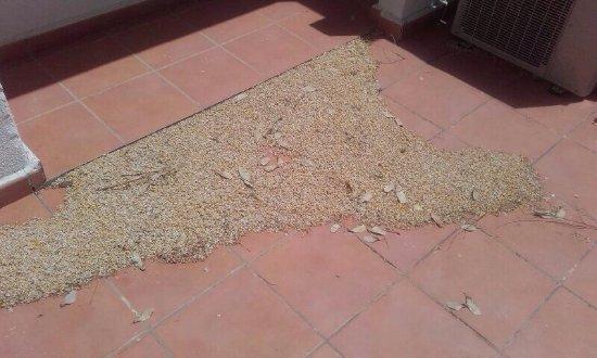 Alhama de Murcia, İspanya: photo2.jpg