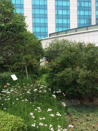 Grand Hyatt Incheon: photo1.jpg