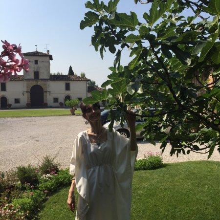 Casa Villa d'Arco: photo2.jpg