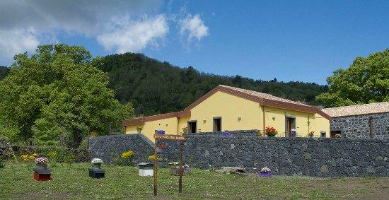 Sant'Alfio, Italia: Viola nel Parco, esterno