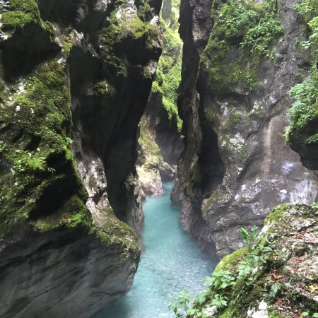 Tolmin Gorge: Sub tropical walk that lasts an hour. Easy level but take water as it can be humid.
