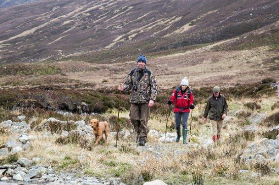 Ardgay, UK: Hiking the land