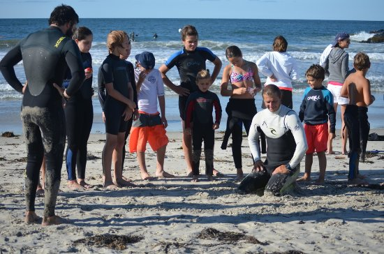 Paddle Surf RI: Safe, fun learning and instruction!