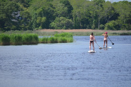 Paddle Surf RI: Great fun on the water.