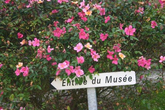 Musee de la Seine Et Marne