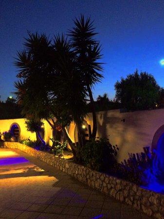 ميلينيوم ستوديوز: Garden at night