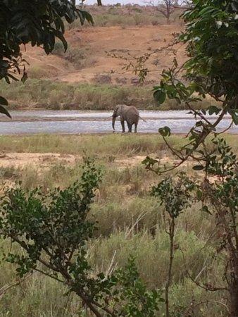 Komatipoort, South Africa: photo3.jpg