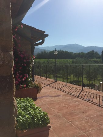 Agriturismo Savernano: A view of the terrace to the mountains