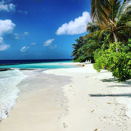 Lily Beach Resort & Spa: Côté plage