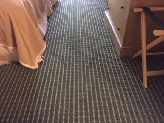 Howard Johnson Plaza Hotel Madison: Glass shards stuck in the carpet