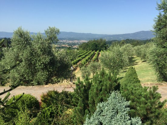 Agriturismo Savernano: View from the terrace