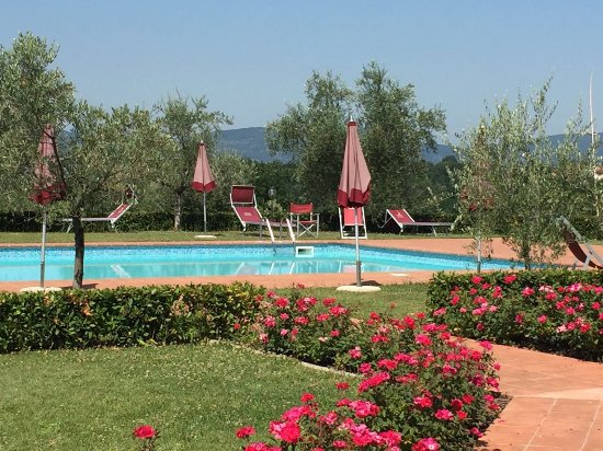 Agriturismo Savernano: The pool viewed from the terrace