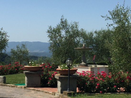Agriturismo Savernano: The fountain and gardens