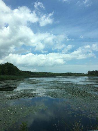 Oceanville, Nueva Jersey: water