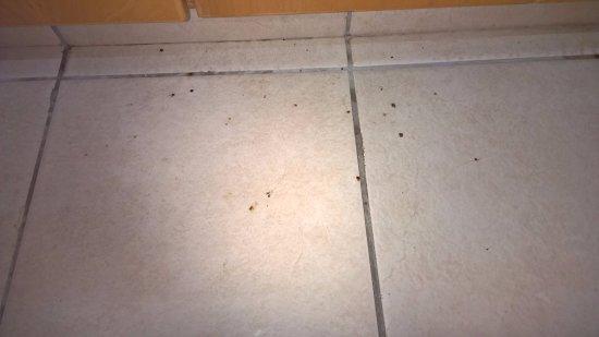 Akti Beach Tourist Village: Dirty floor in kitchen area