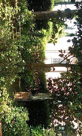 Villino il Leone: Snapchat-4571010519688741645_large.jpg
