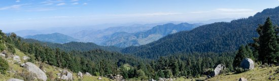 Sirmour, India: Panorama of the Churdhar Sanctuary jungle from the trail; there are bear in the jungle
