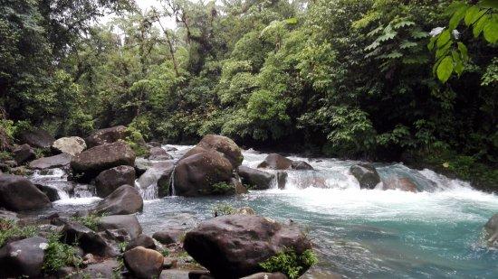 Rio Celeste Hideaway Hotel: Sendero al río