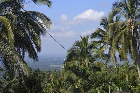 Bali Eco Stay Bungalows: View from the road into the village