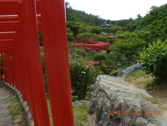 Tsugaru, ญี่ปุ่น: 上方から映した写真です。実際の方が綺麗です。