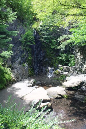 Nitobe Memorial Garden - Picture of Nitobe Memorial Garden ...