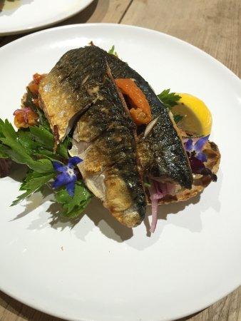 Newport -Trefdraeth, UK: Line caught mackerel on sourdough toast