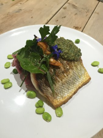 Newport -Trefdraeth, UK: Sea bass with salsa verde