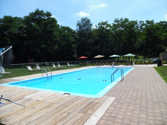 Florida, estado de Nueva York: Too hot? Come take a dip in our pool.