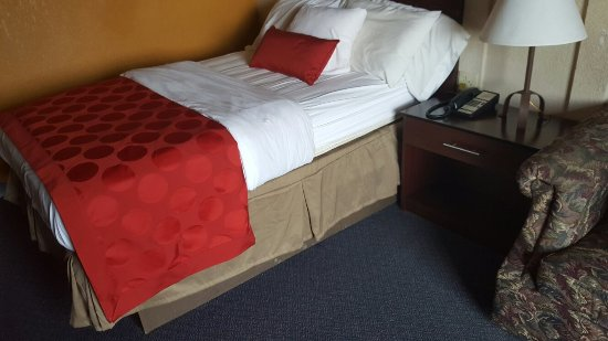Monument, CO: Pictures say a thousand words. Zoom in close on pictures. Cum stains on bed ,hotel staff horribl