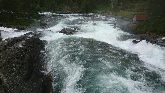 Forde, Noruega: Close on nature