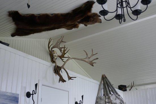 Asarna, Sweden: The bear on the ceiling.