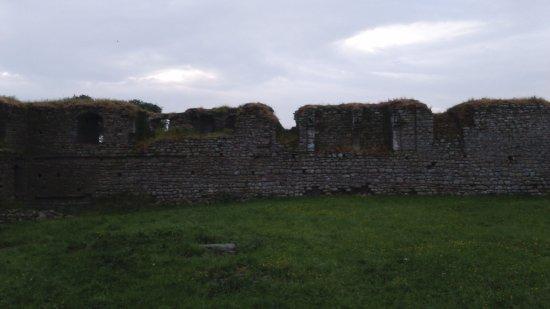 County Carlow, Irlande : Ballymoon Castle