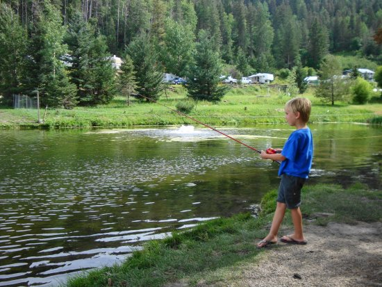 Silver springs fishing pond cloudcroft nm top tips for Pond fishing tips