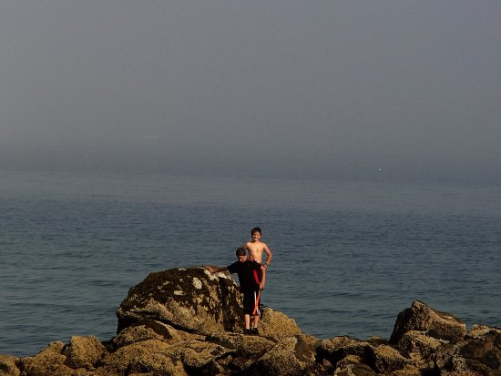 Lynch Park: Fog in the background, FUN on the beach! The boys loved the tidepools at low tide!