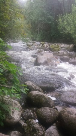 Gold Bar, WA: Rushing water - so LOUD! :-)