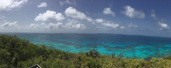 Caribbean Sea Adventures: photo0.jpg
