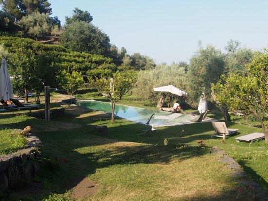 Zafferana Etnea, İtalya: photo6.jpg