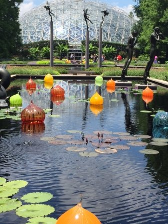 Missouri Botanical Garden: More Orbs With Glass Arboretum