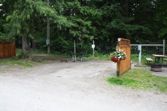 Williamson's Lake Campground: Back in site