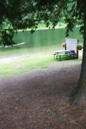 Williamson's Lake Campground: tent sites beside the lake