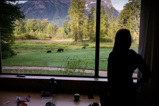 Tweedsmuir Park Lodge: View grizzly bears from your chalet!